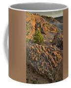 Ripple Boulders At Sunset In Bentonite Quarry Coffee Mug