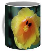 Rising In The Sun Coffee Mug