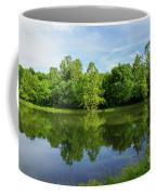 Ritter Springs Pond Coffee Mug