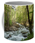 River At Greenbrier Coffee Mug