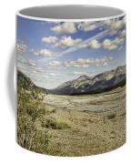 River Bed In Denali National Park Coffee Mug