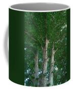 River Birches Coffee Mug