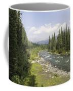 River In Denali National Park Coffee Mug