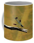 River Jewelwing Coffee Mug