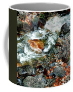 River Rock Leaves Coffee Mug