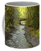 River Through The Rainforest Coffee Mug