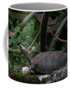 River Turtle 1 Coffee Mug
