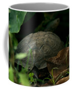 River Turtle 2 Coffee Mug