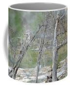 River008 Coffee Mug