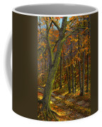 Road In The Woods Coffee Mug