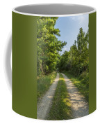 Road In Woods 1 F Coffee Mug
