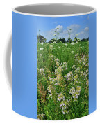 Roadside Bouquet Of Wildflowers In Mchenry County Coffee Mug