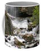 Roadside Mountain Stream Coffee Mug