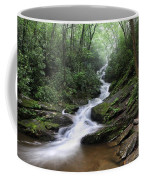 Roaring Fork Falls Coffee Mug
