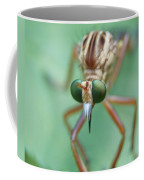Robber Fly Coffee Mug
