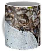 Robber Fly Sitting Coffee Mug