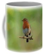 Robin-1 Coffee Mug by Paul Gulliver