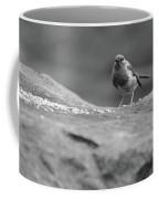 Robin In Black And White Coffee Mug