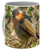 Robin In Hedgerow 3 Coffee Mug