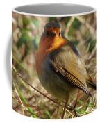 Robin In Hedgerow 2 Inch Donegal Coffee Mug