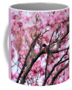 Robin In Magnolia Tree Coffee Mug