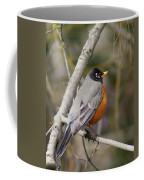 Robin In Tree 2 Coffee Mug