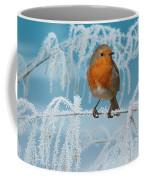 Robin On Frosty Grass Coffee Mug