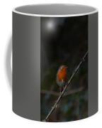 Robin On The Branch Coffee Mug