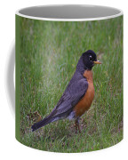 Robin On The Lawn Coffee Mug