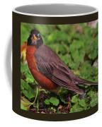 Robin Portrait Coffee Mug