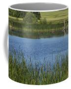 Rochester Wildlife Pond 1 Coffee Mug