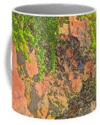 Rock And Shrub Abstract I  Coffee Mug