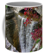 Rock City Falls Coffee Mug