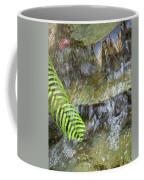 Rock Fountain Coffee Mug
