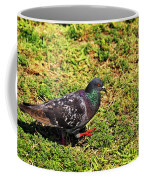 Rock Pigeon Coffee Mug