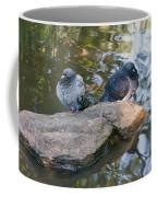 Rock Doves Coffee Mug