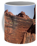 Rock Texture And Lichen Coffee Mug