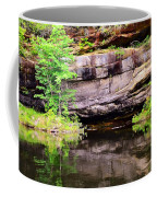 Rock Wall Reflections Coffee Mug