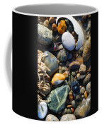 Rocks And Shells Coffee Mug