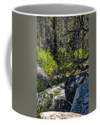 Rocks Water And Knarly Branches Coffee Mug