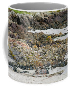 Rocky And Sandy Beach Coffee Mug