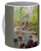 Rocky Creek In The Catskills  Coffee Mug