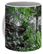 Rocky Fern Room Coffee Mug