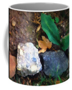 Rocky Ground Coffee Mug