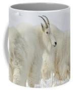 Rocky Mountain Goats In Wyoming Winter Coffee Mug