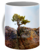 Rocky Mountain Tree Coffee Mug