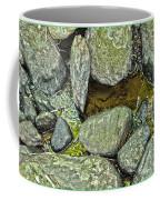 Rocky Nature Coffee Mug