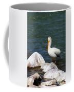 Rocky Shores Coffee Mug