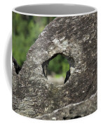Rocky View Point Coffee Mug by Debbie Cundy