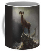 Rocky_mountain_sheep_or_big_horn,_ovis,_montana Coffee Mug